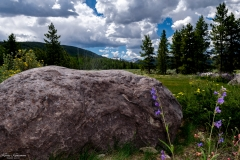 Utah-Wilderness-2-of-15